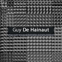 Guy de Hainaut